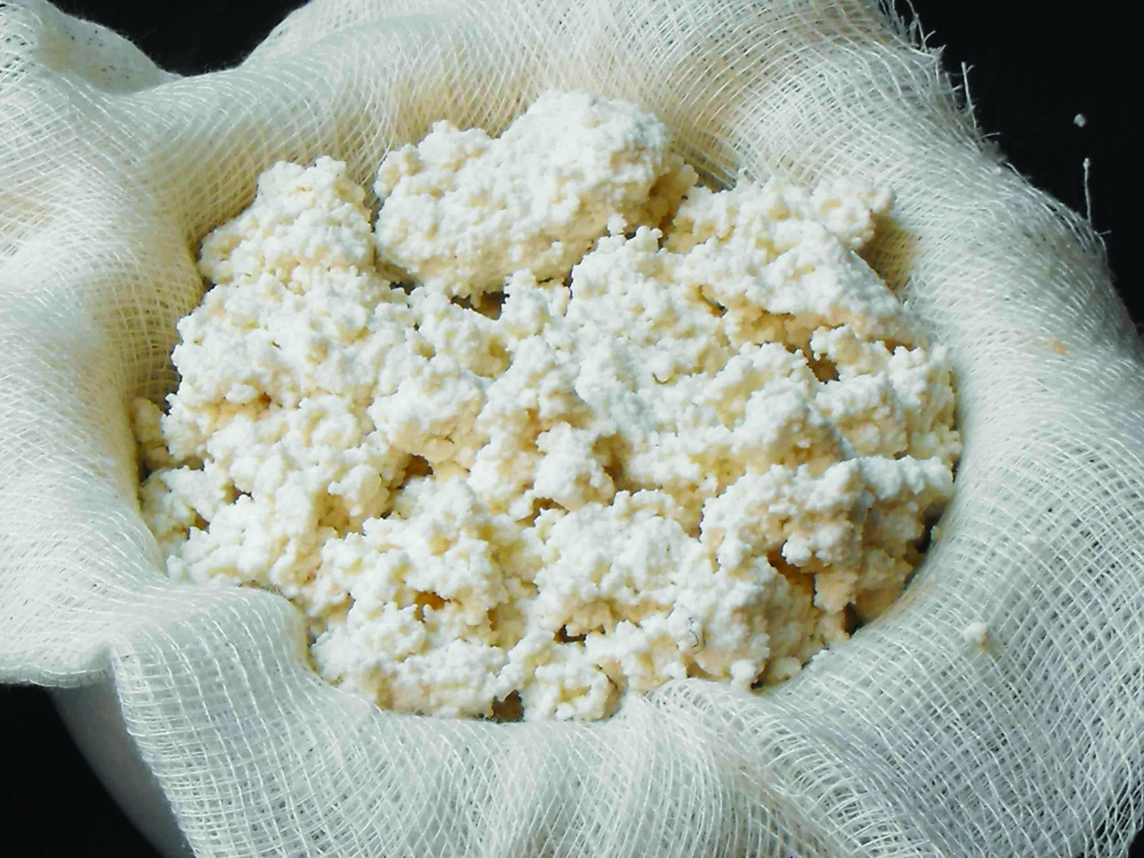 Peynir Çeşitleri Kaç Kalori
