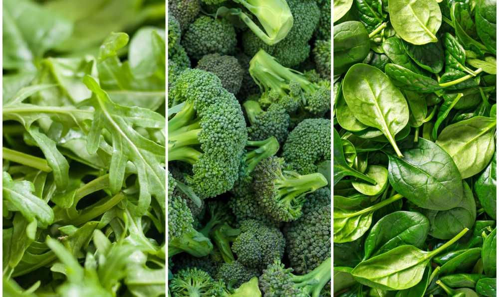 yeşil renkli meyve ve sebzeler