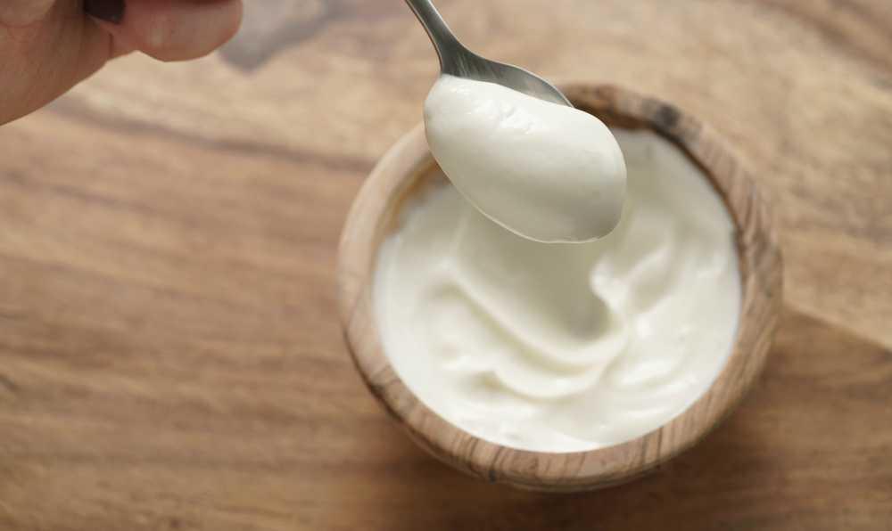yogurdun faydalari
