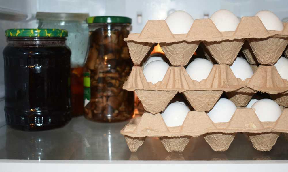 yumurta nasil muhafaza edilir