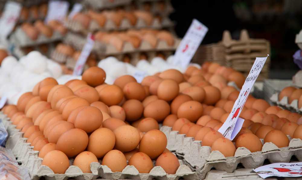 yumurta secerken