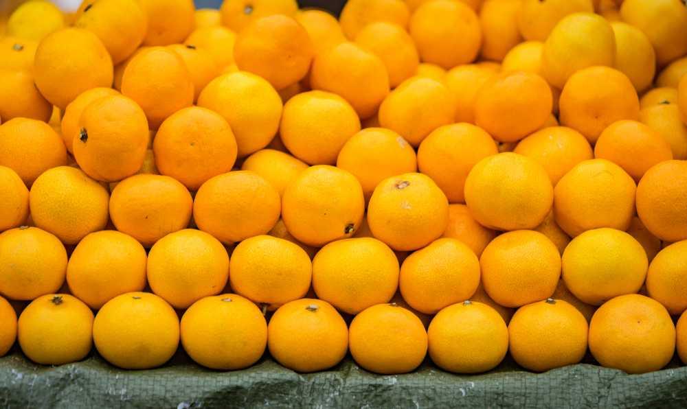 portakal nasil secilir