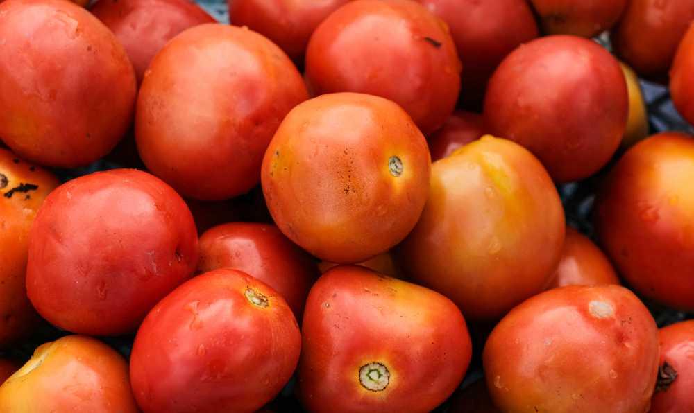 domates corbasi tarifleri