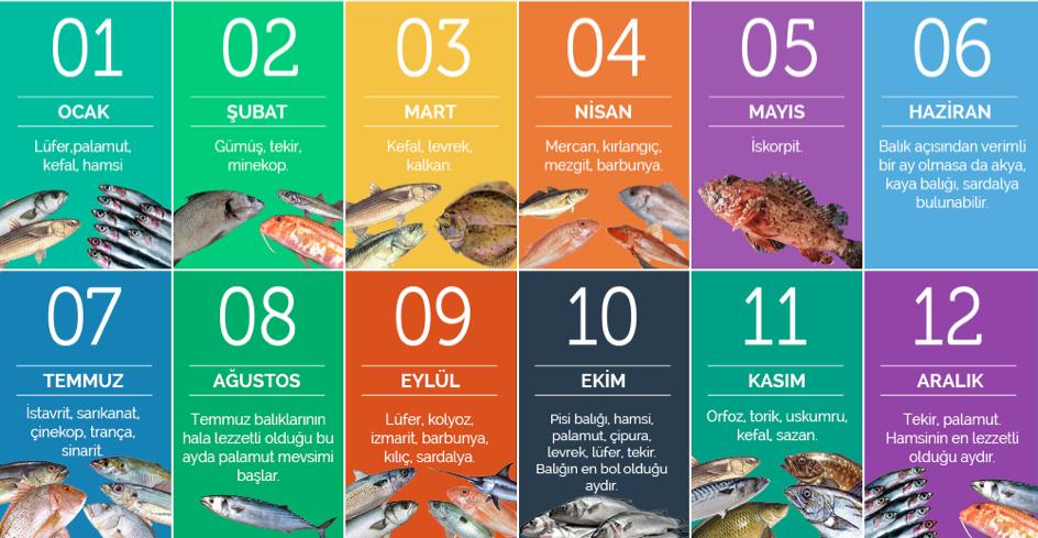 Hangi balık ne zaman tüketilir